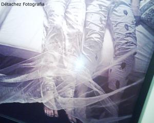 Foto da exposição.